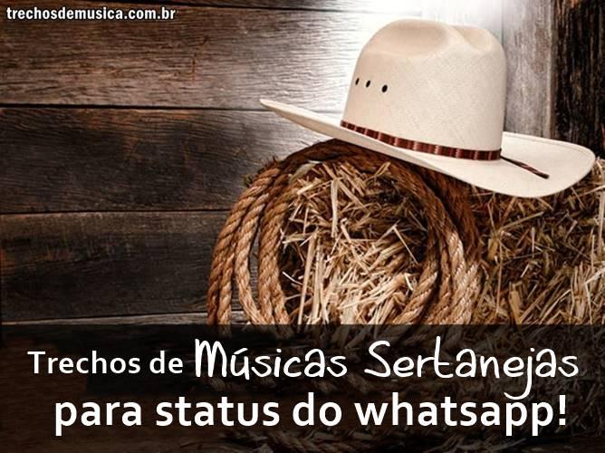 status-de-musicas
