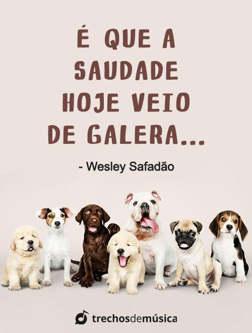 Frases de Wesley Safadão 3