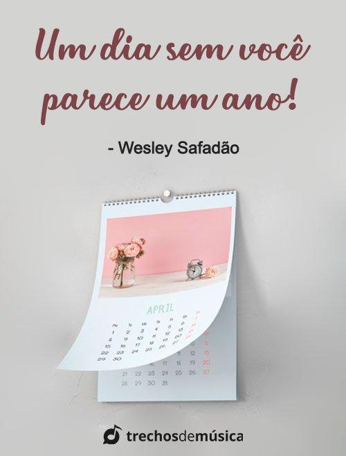 Frases de Wesley Safadão 1
