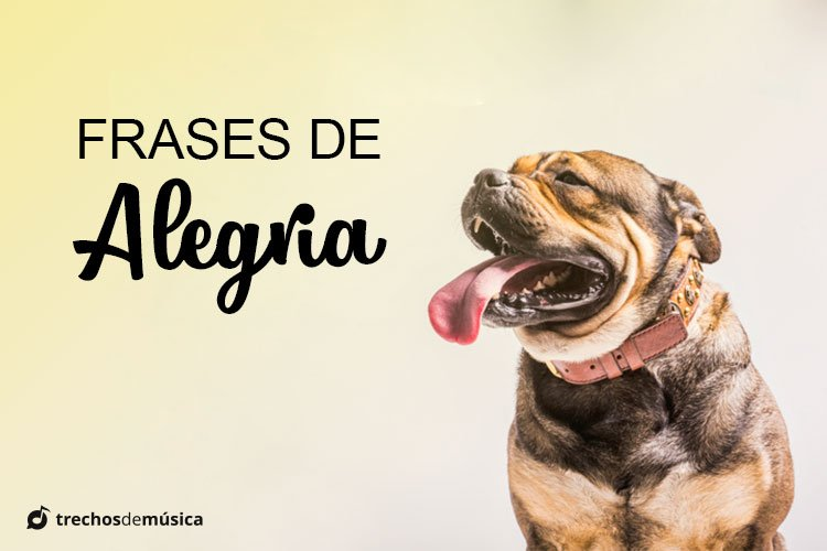 Frases de Alegria para Transbordar Felicidade no Status