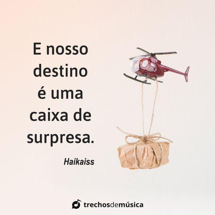 O Destino nos Surpreende 16
